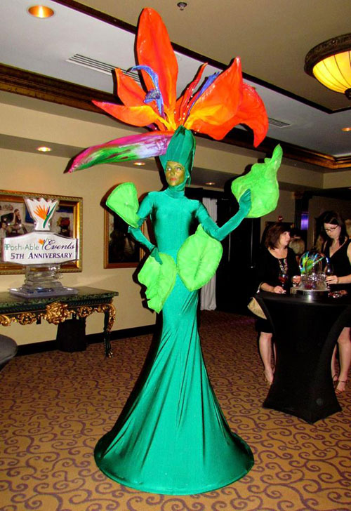 Bird of Paradise costume - Florida